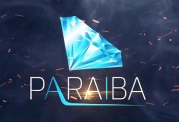 Paraiba world Ltd fake or legit